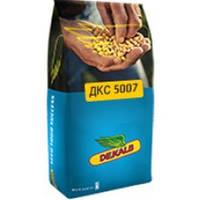 Семена кукурузы ДКС 5007 (Монсанто)