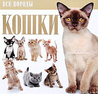 . Кошки