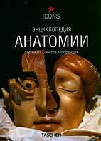 Дюринг М. Энциклопедия анатомии