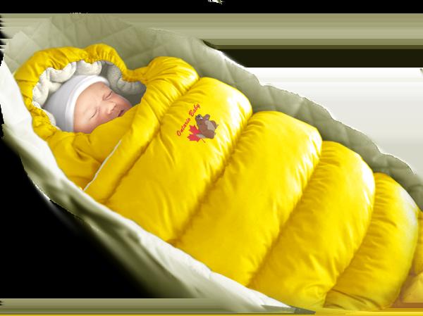 Желтый Дутик Онтарио