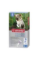 Bayer Advantix капли для собак свыше 25 кг, 1 пипетка