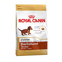 Royal Canin (Роял Канин) DACHSHUND Junior - корм для щенков таксы, 1,5кг