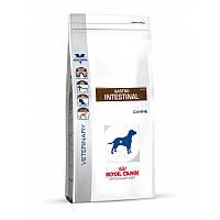 Royal Canin GASTRO INTESTINAL Canine - лечебный корм для собак при нарушении пищеварения, 2кг