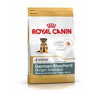Royal Canin (Роял Канин) GERMAN SHEPHERD Junior - корм для щенков Немецкой овчарки, 12кг