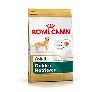 Royal Canin (Роял Канин) GOLDEN RETRIEVER Adult - корм для собак породы голден ретривер, 12кг