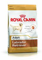 Royal Canin (Роял Канин) LABRADOR Adult - корм для лабрадоров ретриверов, 3кг
