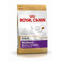 Royal Canin (Роял Канин) MALTESE Adult - корм для собак породы мальтезе (мальтийская болонка), 0.5кг