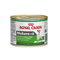 Royal Canin MATURE +8 - консервы для собак старше 8 лет для поддержания жизненных сил, 195г