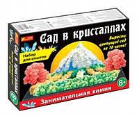 Набор для опытов Ранок Сад в кристаллах большой (0262)