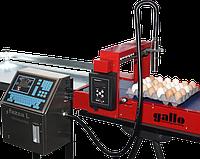 Комплекс для маркировки яиц Gallo