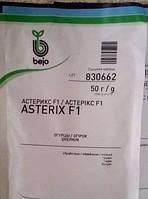 Семена огурца Астерикс F1 / Asterix F1 (Бейо / Bejo) 50 г - пчелоопыляемый, ранний гибрид (45-48 дней)