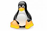 Установим на рабочий (домашний) компьютер Линукс