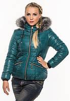 Куртка женская Куртки зимние