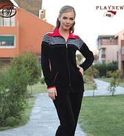 Велюровый спортивный костюм с воротником
