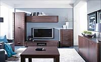 """Модульная система для гостиной """"Рафло"""", фото 1"""