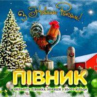 Головоломка Новогодняя Петушок, фото 1