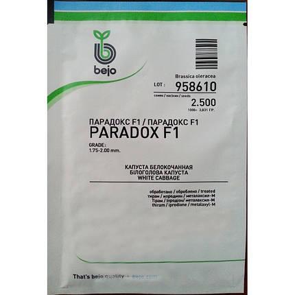 Семена капусты Парадокс F1 (Бейо/Bejo), 2500 семян — поздняя (140 дней), для хранения, белокочанная, фото 2