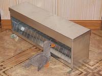 Бункерная кормушка для суточных цыплят, голубей, перепелов