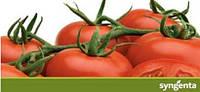 Супер Акция на семена томата!