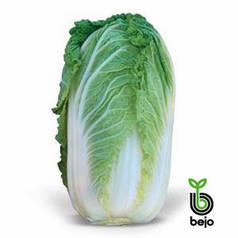 Семена капусты Маноко F1 (Бейо/Bejo), 2500 семян — ранняя (50 дней), пекинская