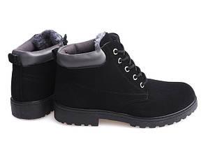 Мужские зимние ботинки Birde