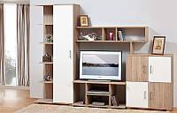 Мебель для гостиной Виннер 2, готовая стенка в гостинную комнату 2200*2000*515