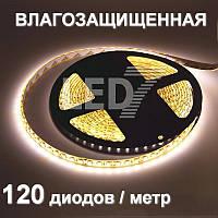 5 метров — влагозащищенная светодиодная лента 3528, 120 д/м, теплый белый, IP65