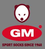 GM Sport (Italy)