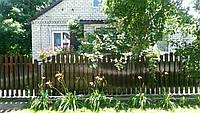 Забор металлический штакетный