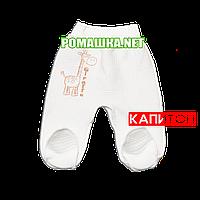 Ползунки (штаны) на широкой резинке р. 56 утолщенные ткань КАПИТОН 100% хлопок ТМ Алекс 3220 Бежевый1