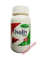 Действует в качестве детоксикационного и желчегонного средства, очищение печени Осолив /Osoliv, Yugveda/60 таб