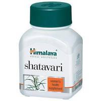 Шатавари-один из лучших аюрведических расаян для здоровья женщины /Shatavari, Himalaya/ 60 таб. (250 мг.)