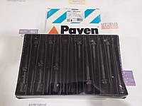 Болти головки (к-кт 22шт.) OM602 пр-во PAYEN HBS059