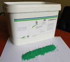 Семена моркови Каскад F1 100000 семян (Бейо / Bejo) - среднепоздний гибрид (130 дней), тип Шантане, фото 3