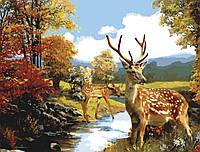 Картини по номерах 40×50 см. Олени у ручья, фото 1