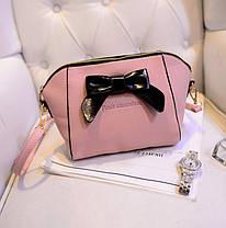 """Стильные сумки с бантиком """"Fruit Chocolate"""" для нежных девушек, фото 3"""