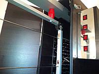 Электростатическая коптильня холодного копчения COSMOGEN CSFE-2000