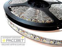 Светодиодная лента MagicLed холодная 3528 120 Led 9,6 Вт/м IP54 (покрыта силиконом), фото 1