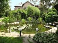 Обустройство исскуственного водоема на участке, ландшафтный дизайн озеленение ландшафтный проект благоустройство территории