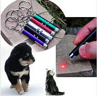 Лазерная указка (дразнилка) для игры с животными. Лазерный луч  для кошки и собаки