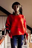 Оригинальный красно-синий свитшот из неопрена Вилли  Jadone  42-50 размеры