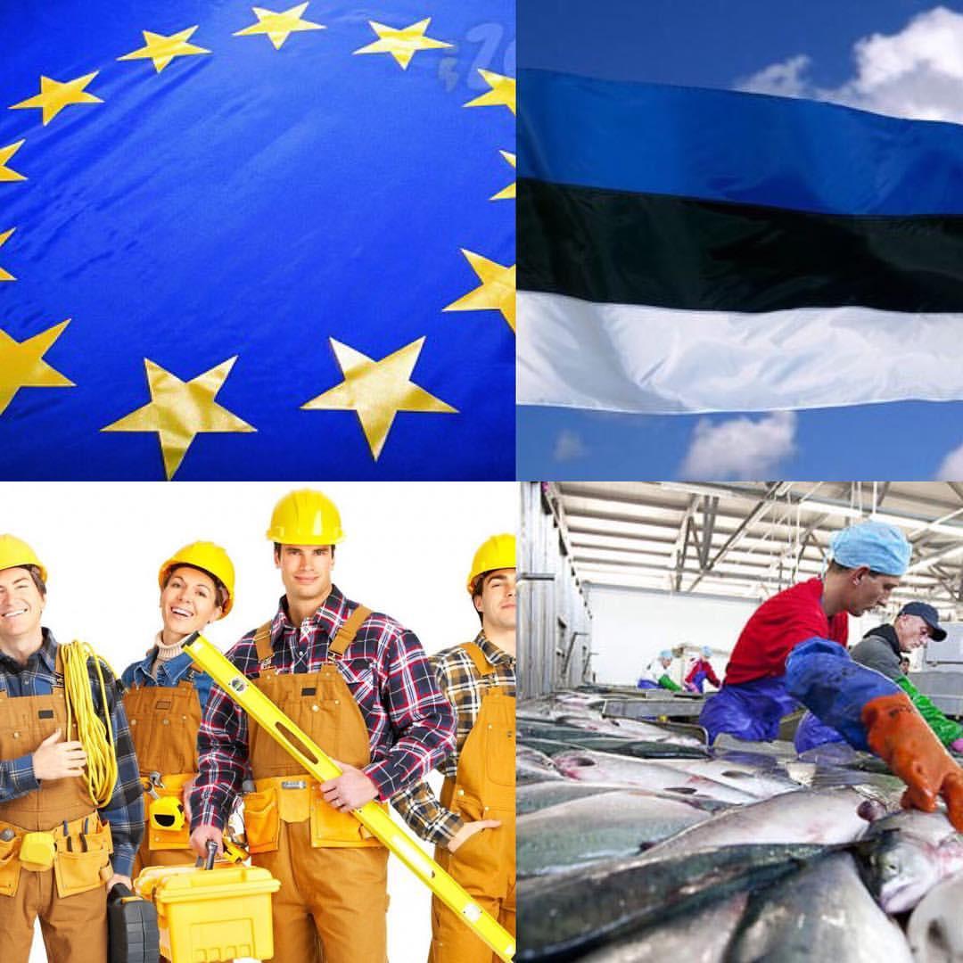 Эстония работа вакансии дома в доминикане купить недорого