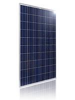 Солнечная батарея Kingdom Solar KDM-P100, 100 Вт (поликристалл)