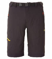 Шорты The North Face Paseo Short Men