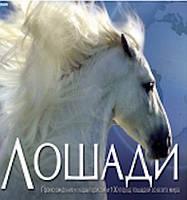 Коні (укр.). Энциклопедія для дітей. Пеликан (Pelican)
