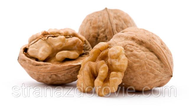 Огромная сила проросших грецких орехов
