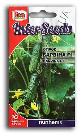 Семена огурца Барвина F1 10 семян, фото 2