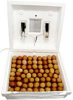 Инкубатор для яиц Рябушка с ручным переворотом на 70 яиц