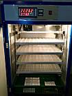 Инкубатор фермерский PRO  HHD 352 автомат , фото 2