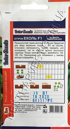 Семена огурца Эколь F1 10 семян, фото 2